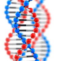 Провести генетический тест в Дзержинске